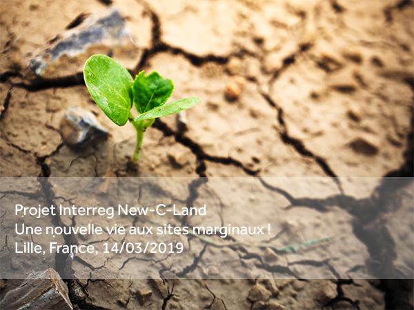 Lancement du projet New-C-Land